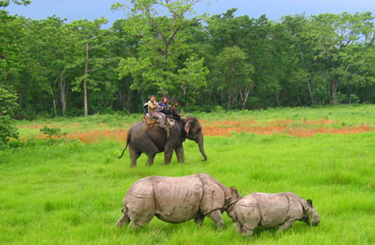 Dhaka Kathmandu Chitwan Nepal Tour Package from Dhaka Bangladesh